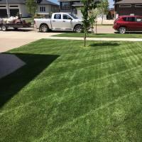 Lawn Care Brandon