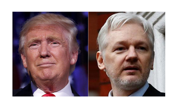 Immunity for Proof Russia Gate is Hoax, Julian Assange Proposes Deal!