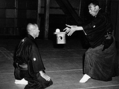 Araki Ryu Kempo