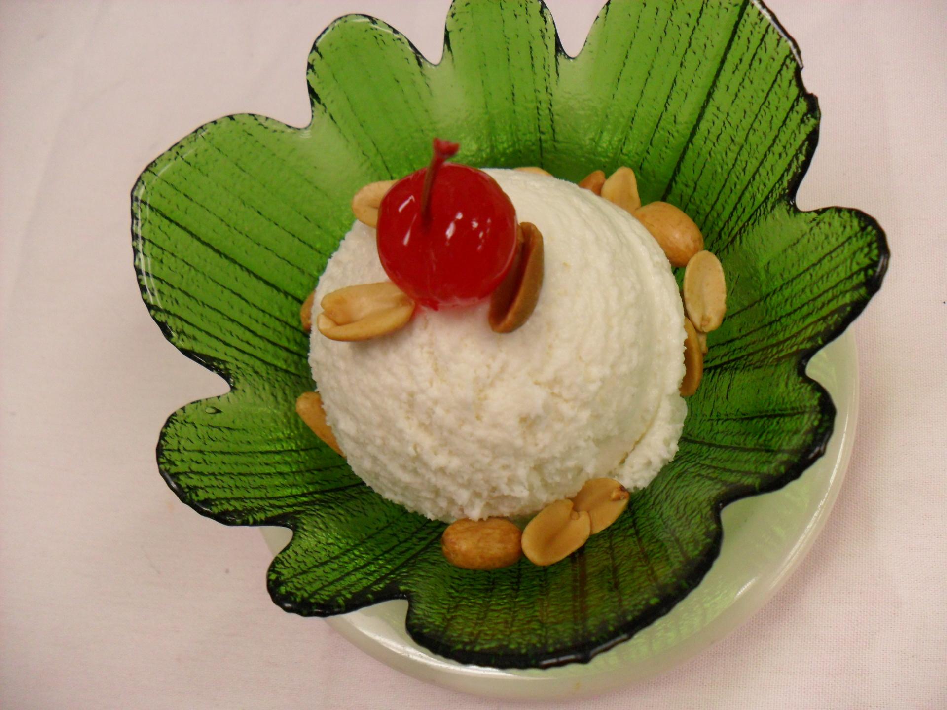 Homemade Coconut Icecream