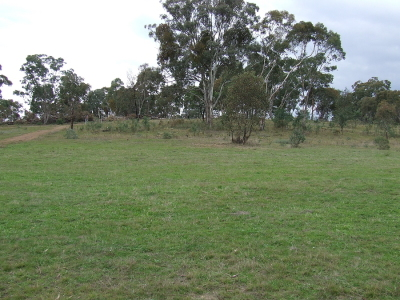 SMALL RURAL ACREAGE – 2 x 1 hectare Wattle Flat - $120,000 each