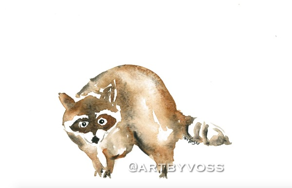 Raccoon I