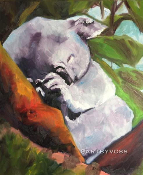 Sleepy Snores Koala