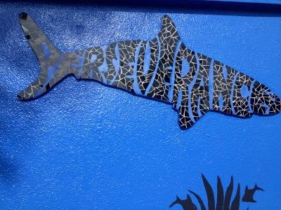 Perseverance Shark