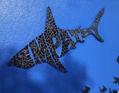 Empathy Shark