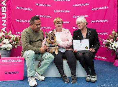 2016 Eukanuba Canine Hero Winner