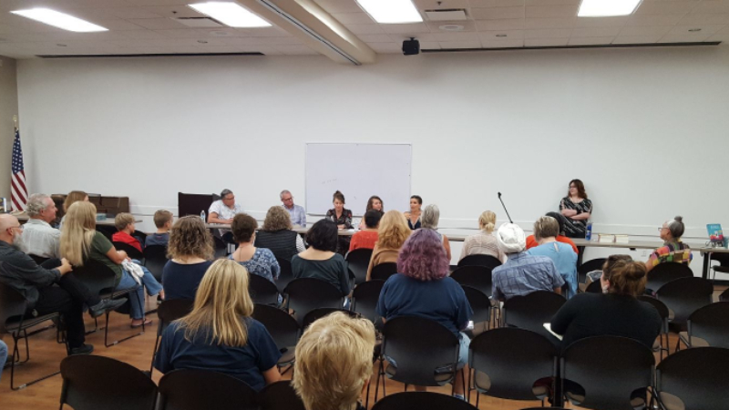 Authors discuss the publishing process and marketing strategies.