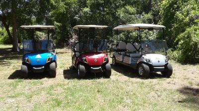 Newer Yamaha Gas Carts