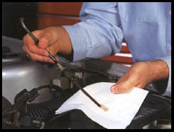 Transmission Fluid Inspection