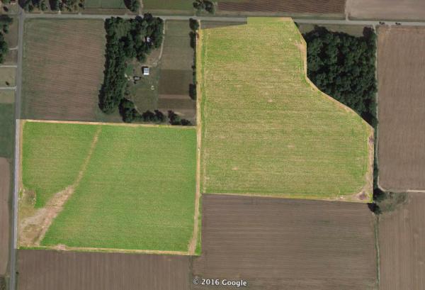 Aerial Ag Mapping   RGB Visual