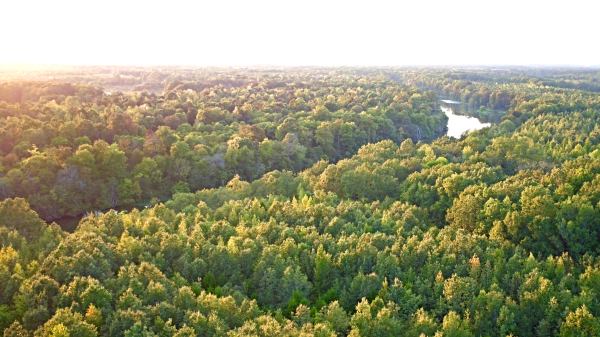Aerial Photography   Investment Property