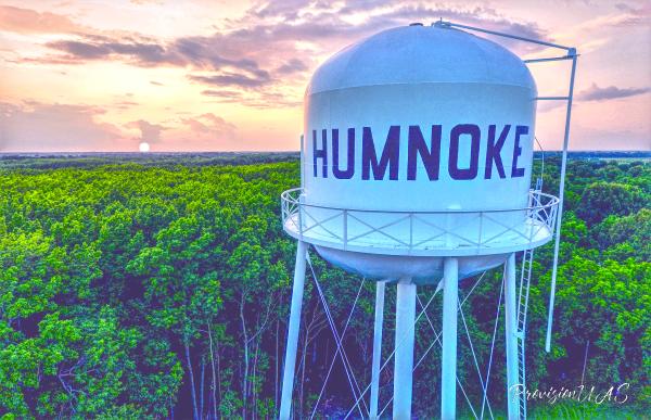 Artistic Prints | Humnoke, AR