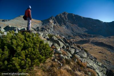 Vârful Păpușa din Valea Rea