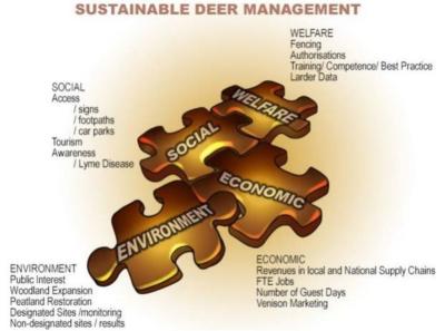 Deer Planning