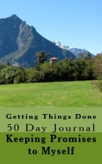 Getting Things Done - 50 Day Journal by Faye Menczer Ascher