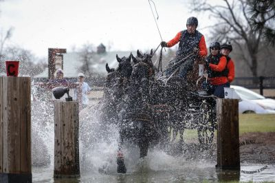 arabo-friesian-four-in-hand-dragstra-water-hazard-windsor trace