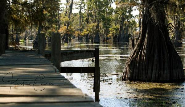 View of a pier at Camp Bis-T-No on Lake Bistineau