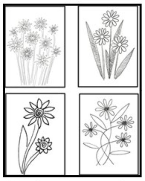 Four black and white drawings of daisy looking flowers.