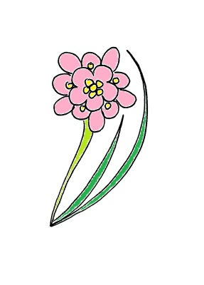 """My Logo, a pink petal flower with yellow """"dots"""" a light green stem and two dark green long thin leav"""