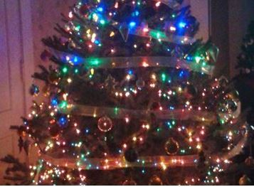 Logo photo of an evergreen decorated for Christmas with multi-colored lights, bling, and sparkle.