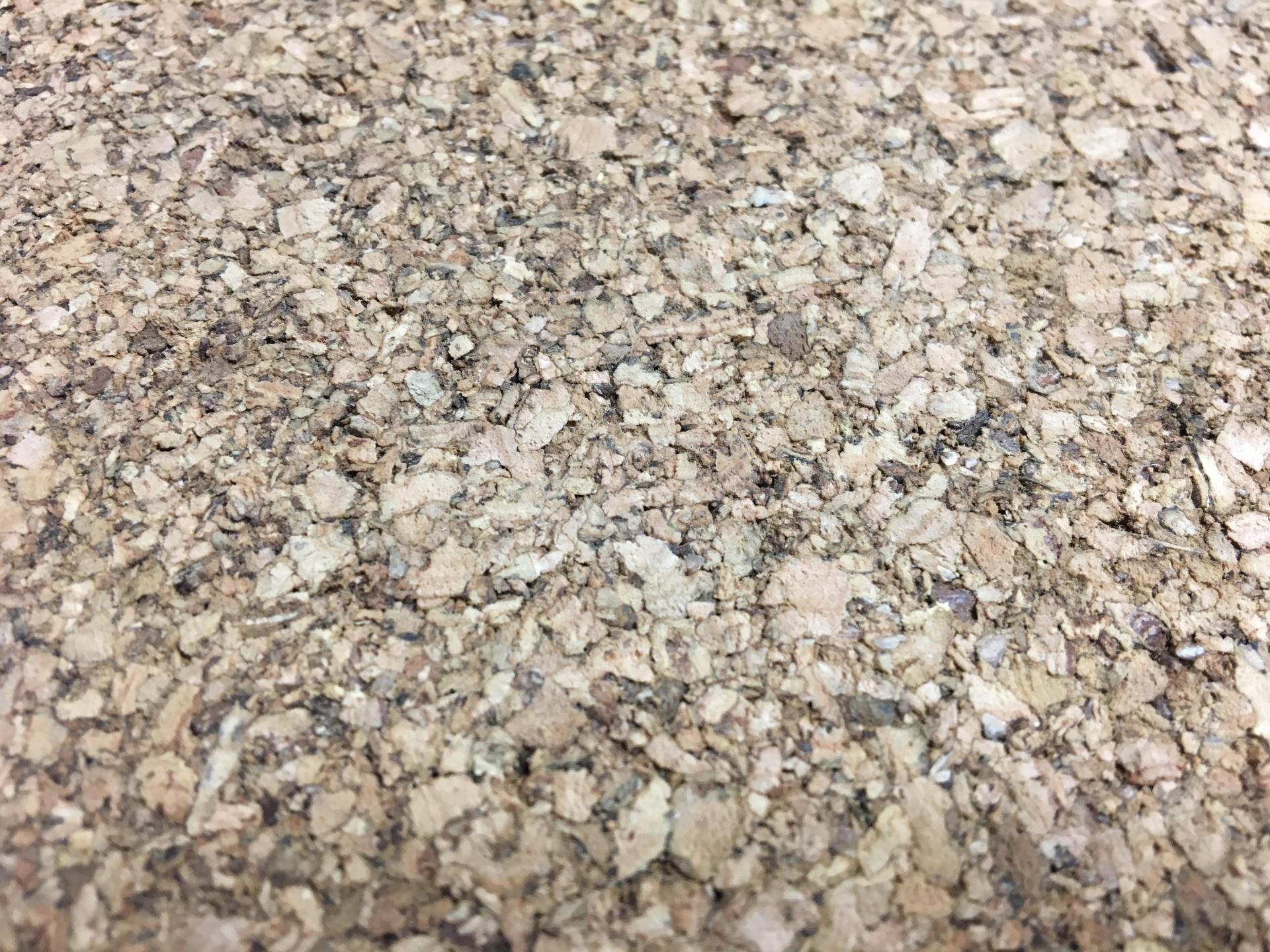 APC Cork, cork, cork flooring, Hardwood, prefinished floor, engineered wood, solid wood, lifestyle, hard surface, prefinished hardwood, prefinished wood, home, design, interior design, wood floor design