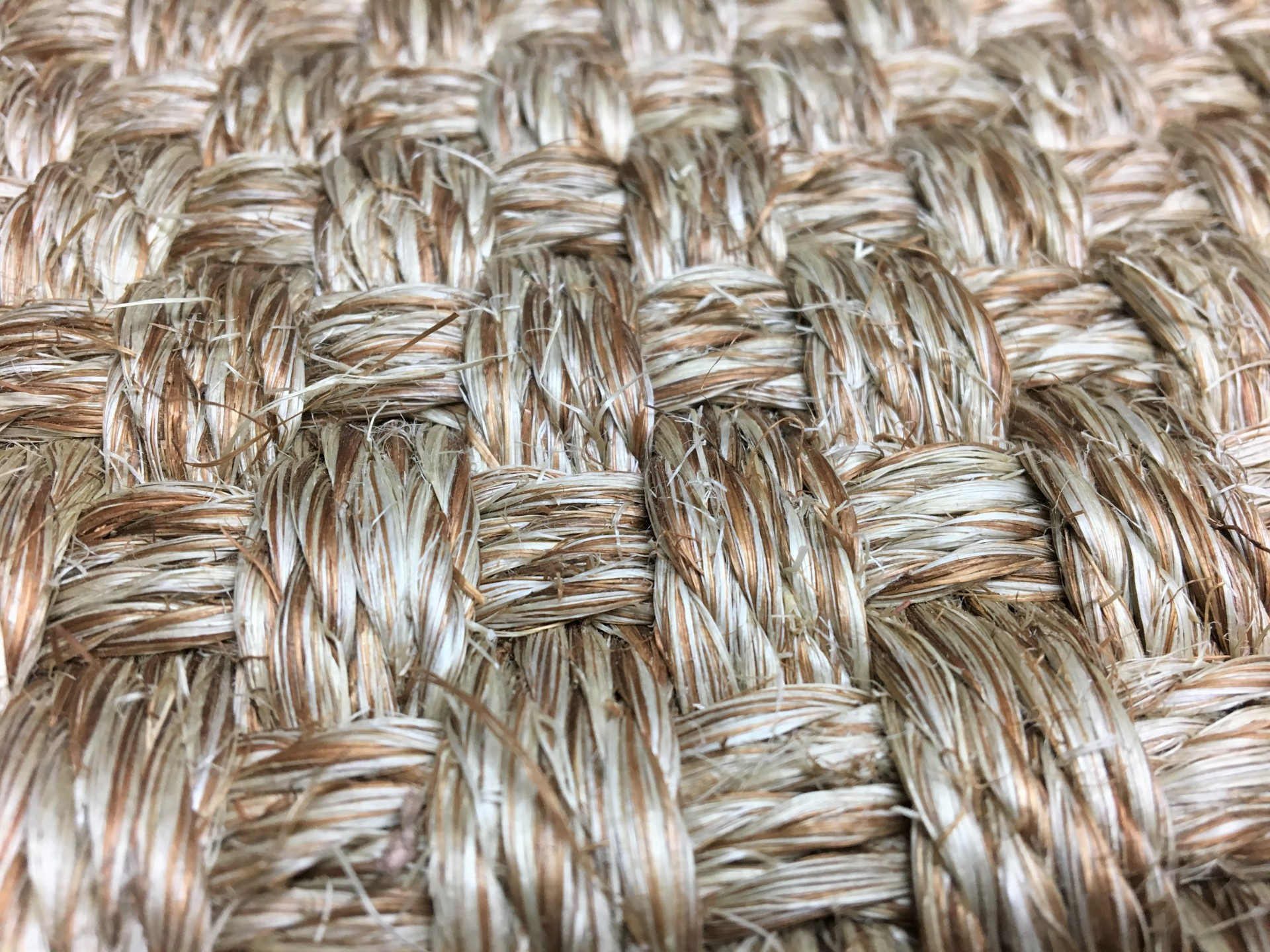 Carpet, area rugs, natural fibers, carpeting, rug, wall to wall carpet, plush, thick, comfortable, soft, clean carpet, DMI, design materials, design materials inc, design materials incorporated
