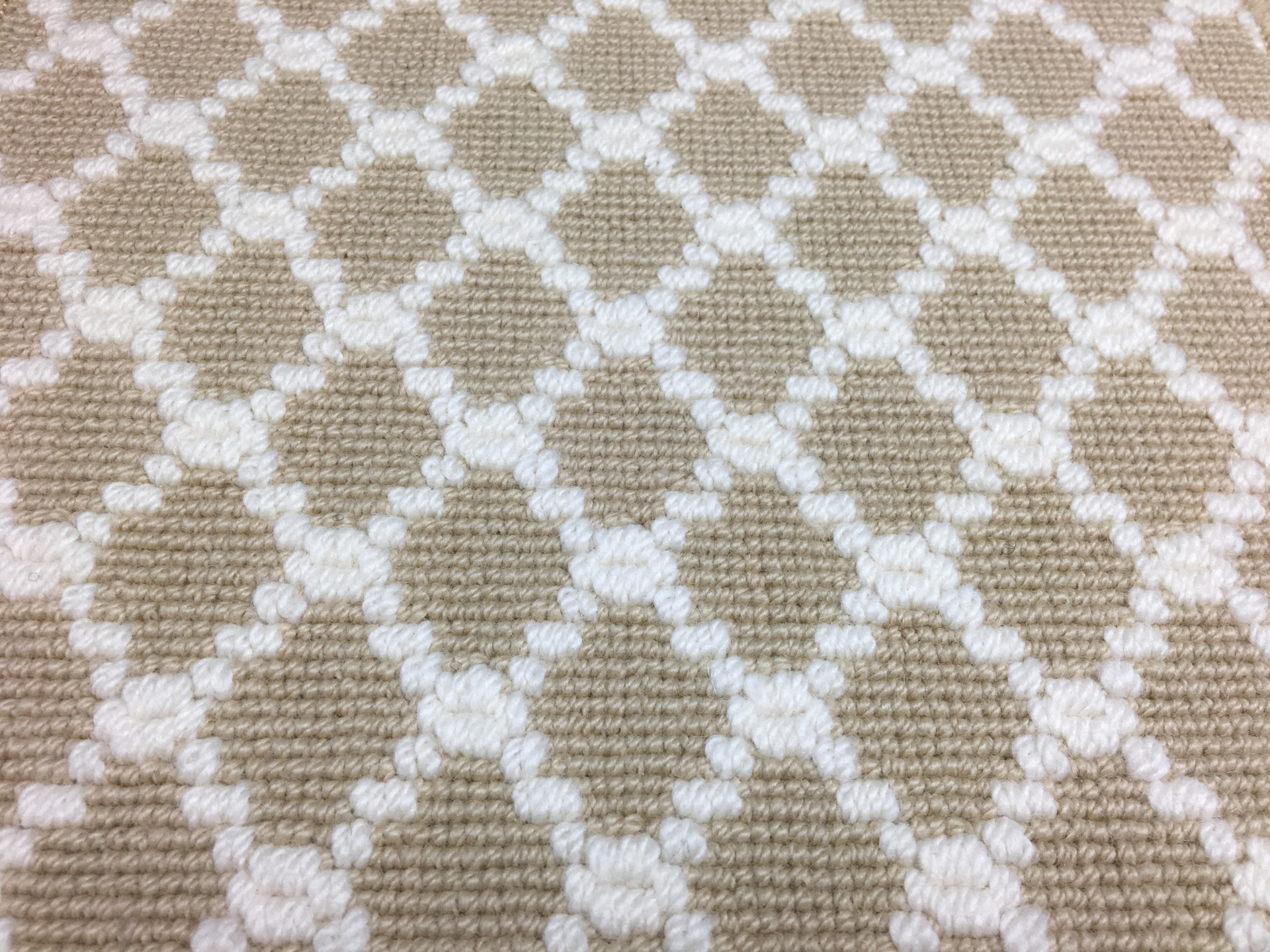Carpet, area rugs, natural fibers, carpeting, rug, wall to wall carpet, plush, thick, comfortable, soft, clean carpet, glen eden, glen, eden, glen eden carpet