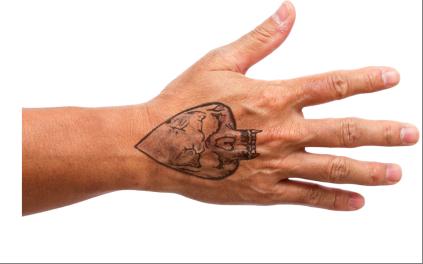 Palm Beach SO hopes tattoos can ID murder victim