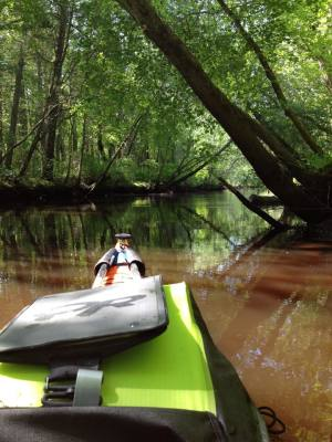 nature, kayak, paddling, adventure, outdoors, kayaking, canoeing