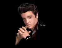 Elvis Presley - by Ray Naso