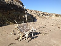 #installationartist #bajacaliforniasur #sanjuanicoartist #driftwoodartist #driftwoodthrone #temporalart #filipinoamericanartist #filiamart #losangelesartist #champoy #champchampchampoy