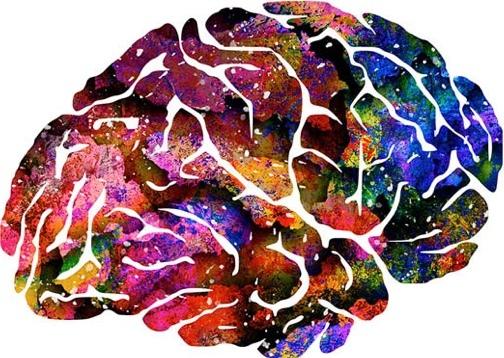 NeuroVascular Centers