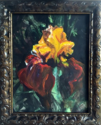 Yellow Iris- Available