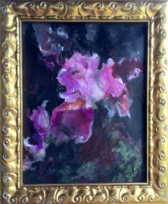 Purple Iris- Available