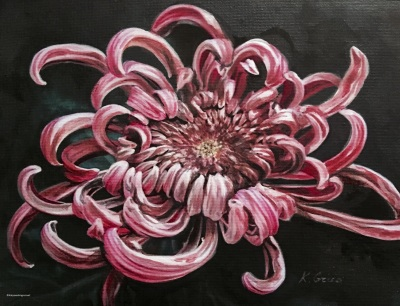 Precious Gift Of Chrysanthemum- Available