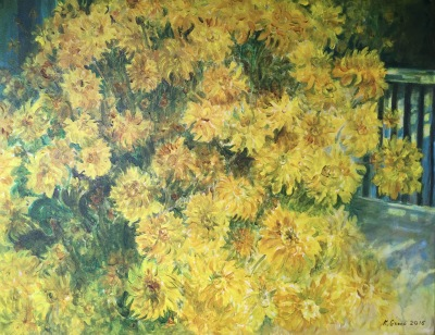 September Yellow Chrysanthemums- Available