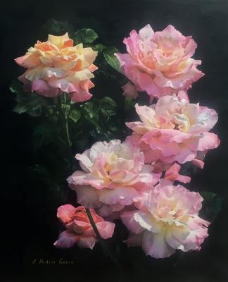 Tender Roses Of Guadalajara- Available