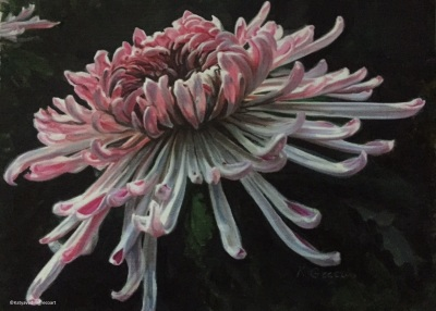 Unforgettable Gift OF Chrysanthemums- Available