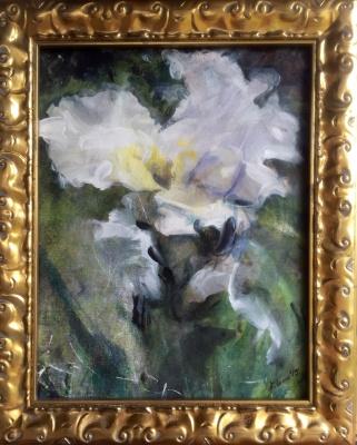 White Iris- Available
