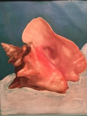 Sea Shell- Private Collection