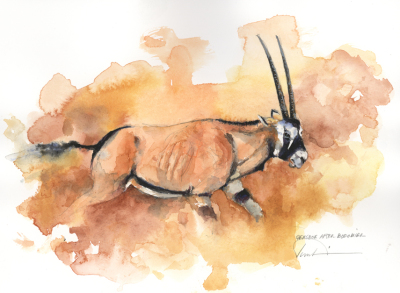 Gemsbok after Bodo Mier  Study