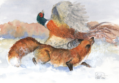 Fox & Pheasant