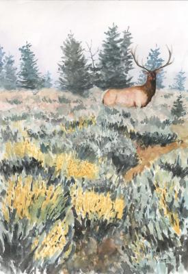 Elk in Sage