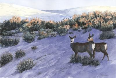 Mule Deer at Dawn