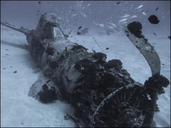 WW2 Corsair wreck at Oahu, HI