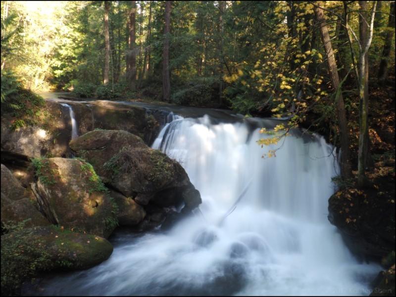 Whatcom Falls, Washington