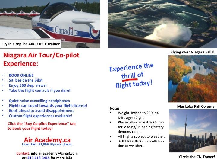 Niagara Co-pilot Experience