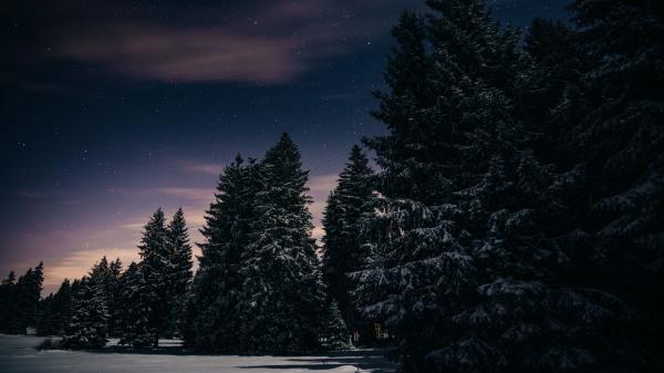 Franches-Montagnes
