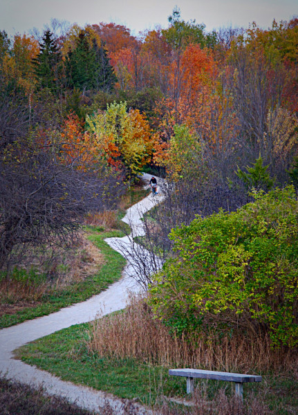 """""""Hungry Hollow Trail"""""""