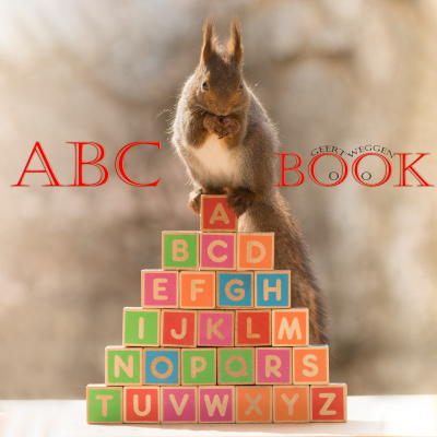 geert, weggen, book, animal, squirrel,